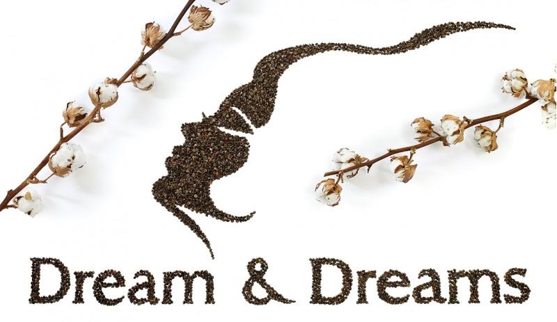 Възглавница Dream&Dreams с растителен био пълнеж от просо